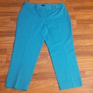 Turquoise Rafaella Ankle Pants Sz.12